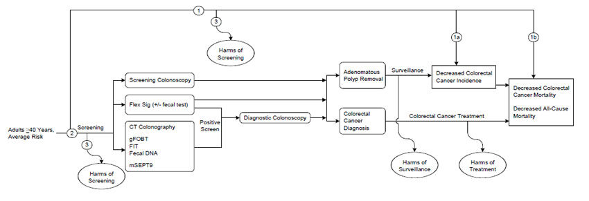 Figure  1 is the proposed analytic framework, which depicts the 3 key questions for the systematic review. Key question 1 addresses the effectiveness of colorectal cancer screening programs in reducing the incidence of colorectal cancer and/or mortality from colorectal cancer. Key question 2 addresses the individual test performance characteristics of each of the screening modalities for the detection of colorectal cancer and/or adenomas. The screening modalities include the following tests: colonoscopy, flexible sigmoidoscopy, computed tomography colonography, fecal screening tests (such as high-sensitivity guaiac fecal occult blood test, fecal immunochemical test, fecal DNA tests), and the circulating methylated septin 9 DNA blood test. Key question 3 addresses the adverse effects of colorectal cancer screening programs and of the individual screening modalities.