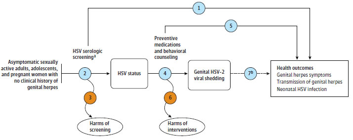 Evidence Summary: Genital Herpes Infection: Serologic Screening - US