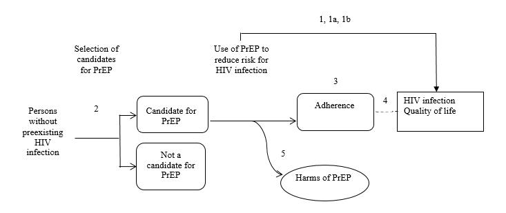 Figure 1. Analytic Framework. The analytic framework depicts the relationship between the population, intervention, outcomes, and harms of pre-exposure prophylaxis for the prevention (PrEP) of HIV infection. The far left of the framework describes the target population for screening as persons without existing HIV infection. To the right of the population is an arrow corresponding to key question 2, which represents selection of candidates for PrEP. This arrow leads to both candidate for PrEP and not a candidate for PrEP populations. From the candidate for PrEP population, an arrow leads to adherence and key question 3. This step may lead to harms, which correspond with key question 5. An arrow coming out of adherence represents key question 4. It leads to the outcomes of HIV infection and quality of life. An overarching arrow symbolizing key question 1 goes directly from use of PrEP to reduce risk for HIV infection to the same outcomes. Harms include increased risky behavior that results in acquisition of other sexually transmitted diseases; adverse effects on renal function, bone, and pregnancy-related outcomes; and infection with antiretroviral drug-resistant HIV.