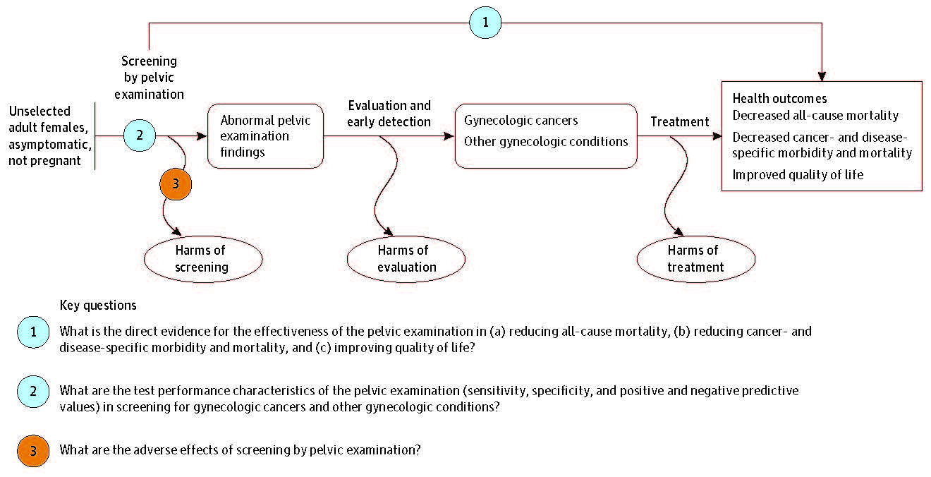 Figure 1. Analytic Framework. Figure 1 is an analytic framework for the key questions of this report. In general, the figure illustrates how screening with the pelvic examination could lead to the detection of gynecologic cancers and conditions and, with treatment, decrease mortality and morbidity and improve quality of life.