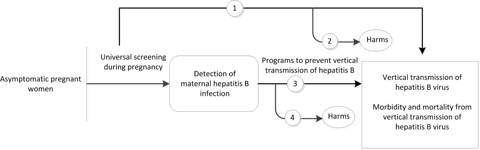 Figure 1 is the analytic framework that depicts the four Key Questions to be addressed in the systematic review. The figure illustrates how universal screening during pregnancy may result in improved health outcomes, including a reduction in the vertical transmission rates of hepatitis B as well as decreased morbidity and mortality (KQ1). The figure also depicts how programs to prevent the vertical transmission of hepatitis B may result in improved health outcomes, including a reduction in the vertical transmission rates of hepatitis B as well as decreased morbidity and mortality (KQ3). Further, the figure illustrates whether universal screening during pregnancy and programs to prevent the vertical transmission of hepatitis B infection are associated with any adverse events (KQ2, KQ4).