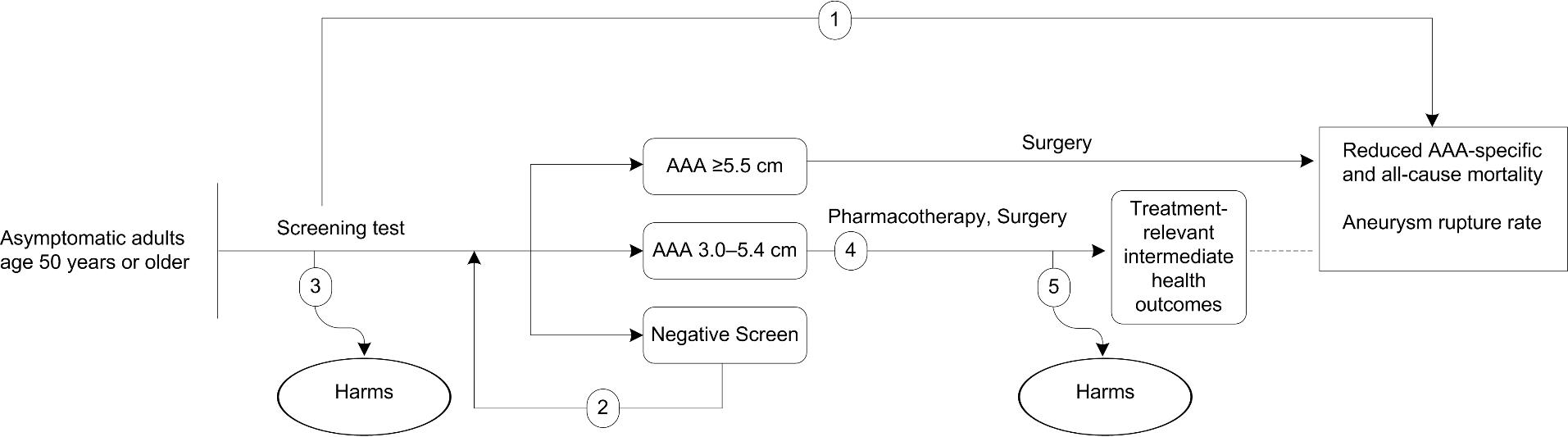 Figure 1 is the analytic framework that depicts the five Key Questions to be addressed in the systematic review. The figure illustrates how screening for abdominal aortic aneurysm (AAA) may result in improved health outcomes, including reducing AAA-specific and all-cause mortality, as well as aneurysm rupture rate (KQ1). Additionally, the figure depicts the effects of rescreening for AAA on health outcomes or AAA incidence in a previously screened, asymptomatic population (KQ2), as well as harms associated with one-time and repeated screening (KQ3). Further, the figure illustrates how treating small AAAs (i.e., aortic diameter of 3.0 to 5.4 cm) with pharmacotherapy or surgery effects treatment-relevant intermediate health outcomes (KQ4) and what harms are associated with these treatments (KQ5).
