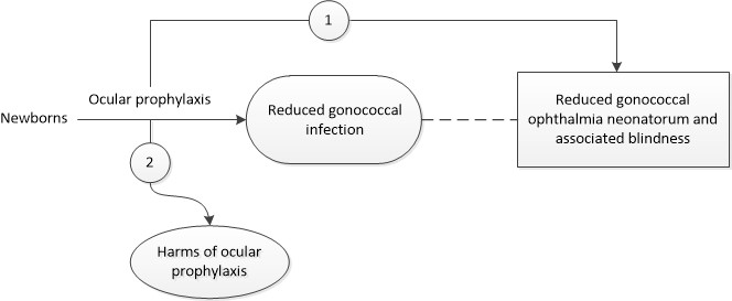 Figure 1 is the analytic framework that depicts the two Key Questions to be addressed in the systematic review. The figure illustrates how ocular prophylaxis for gonococcal ophthalmia neonatorum may result in improved health outcomes, including reduced gonococcal ophthalmia neonatorum and associated blindness (Key Question 1). Additionally, the figure illustrates whether ocular prophylaxis for gonococcal ophthalmia neonatorum is associated with any harms (Key Question 2).
