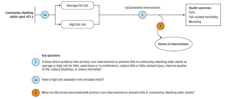 Figure 1 is an analytic framework for the key questions of the review that depicts the effect of fall prevention interventions on  falls, fall-related morbidity, and fall-related mortality (and subsequent harms) for average- and high-risk community-dwelling adults age 65 years or older.