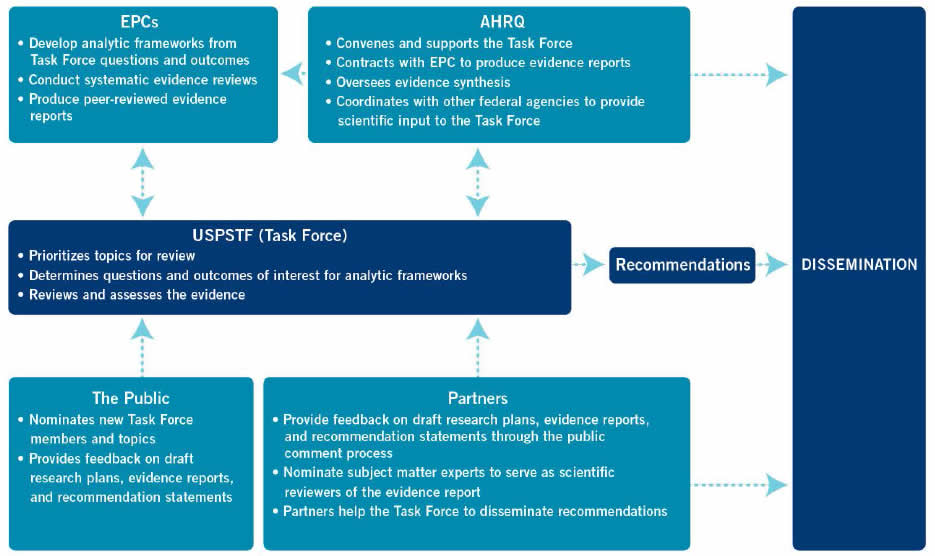 Figure 1. Group Roles in the Task Force's Recommendation Development and Dissemination Processes